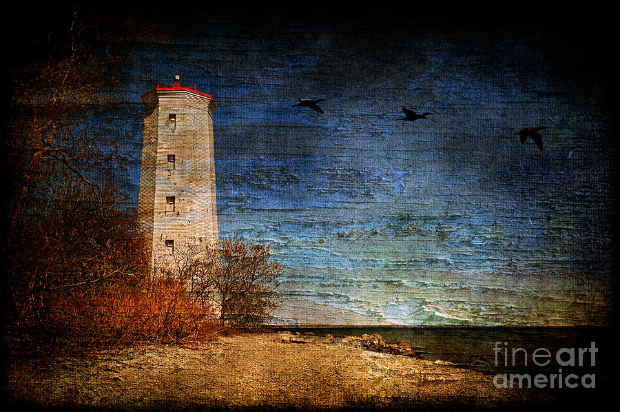Lighthouse Photograph - Presquile Lighthouse by Lois Bryan