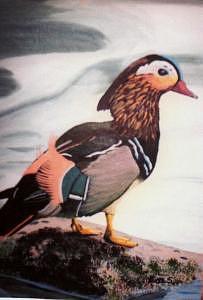 Pretty Bird Painting by Lois Sallans