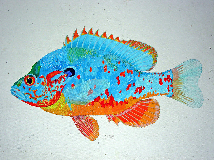 Pretty Blue Fish Painting by Don Seago