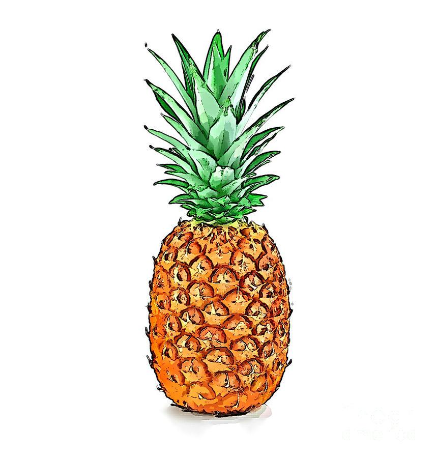 Pretty Pineapple II Digital Art by Jennifer Capo