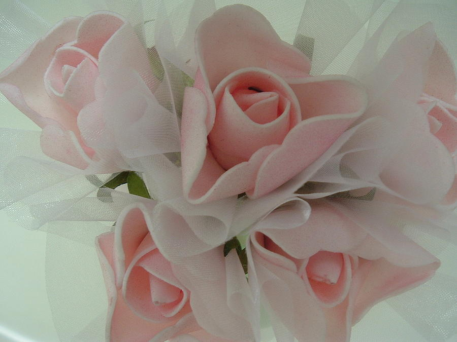 Pink Photograph - Pretty Pink by JoAnn Tavani