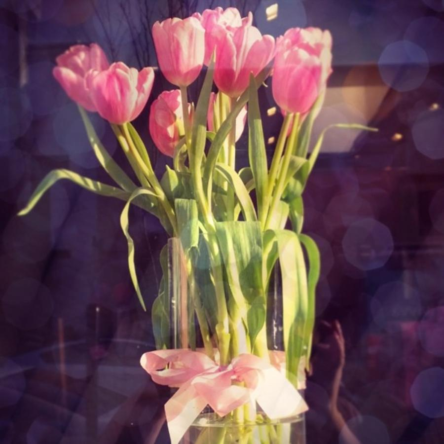 Pink Photograph - Pretty #tulip #flower #arrangement I by Shari Warren