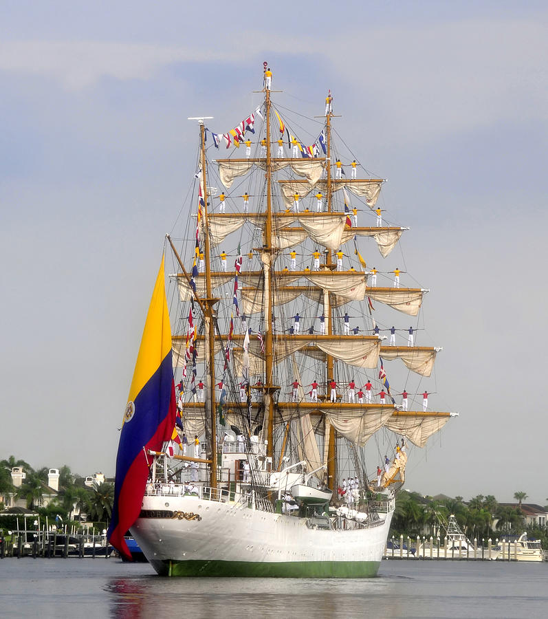 Columbia Photograph - Pride Of Columbia by David Lee Thompson