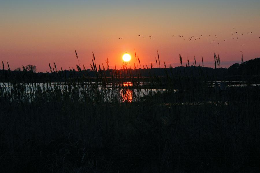 Marsh Photograph - Primehook Sunset by See Me Beautiful Photography