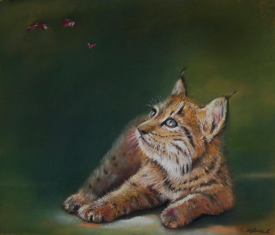 Linx Pastel - Principe Donana by Ceci Watson