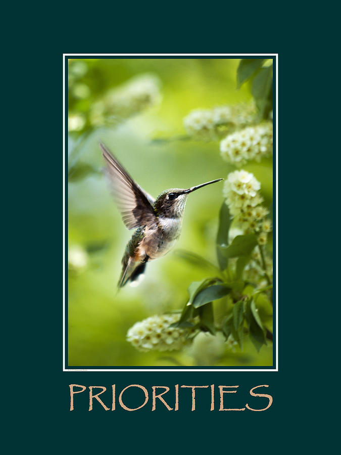 Priorities Photograph - Priorities Inspirational Motivational Poster Art by Christina Rollo