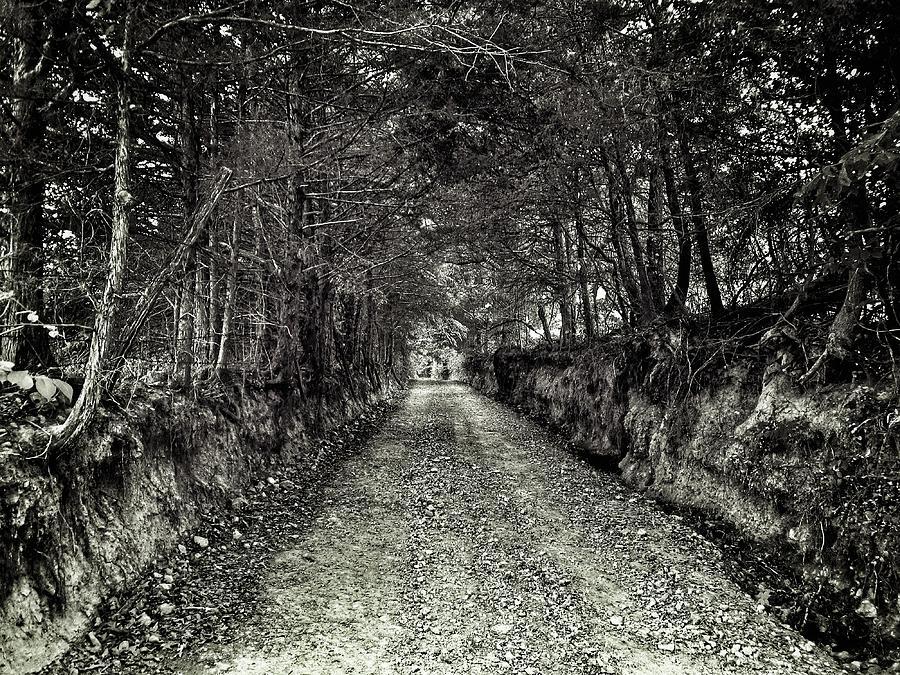 Private Road B Photograph