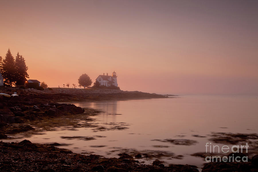 Bay Photograph - Prospect Harbor Dawn by Susan Cole Kelly