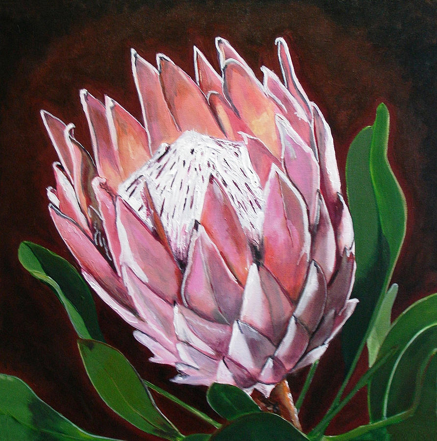 Flower Painting - Protea by Jacqui Simpson