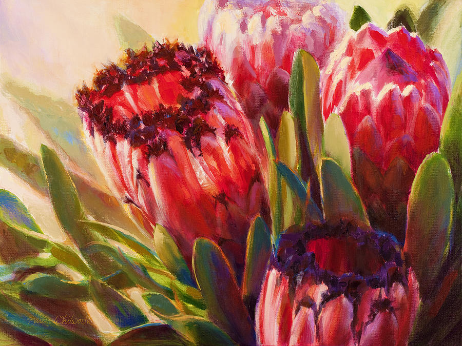 Pink mink protea tropical flowers botanical floral painting protea neriifolia painting pink mink protea tropical flowers botanical floral painting hawaii mightylinksfo
