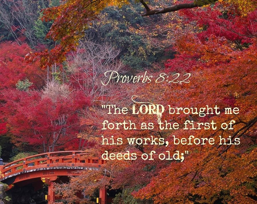 Proverbs105 Photograph by David Norman