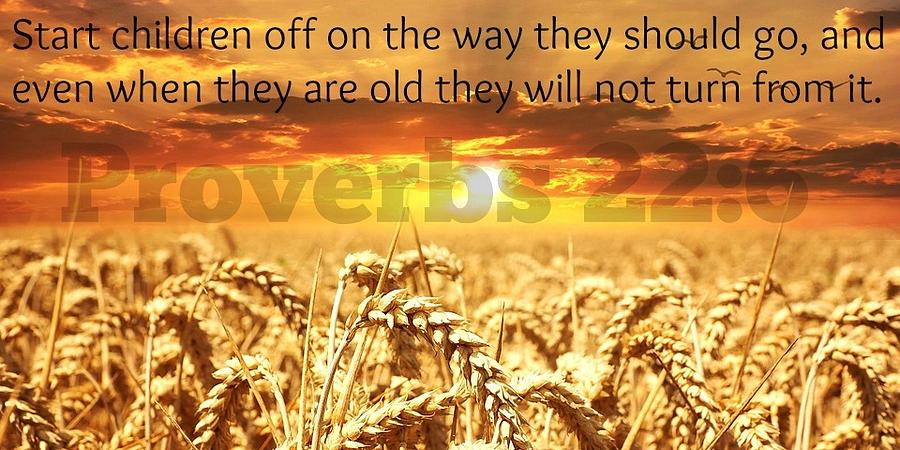 Proverbs111 Photograph by David Norman
