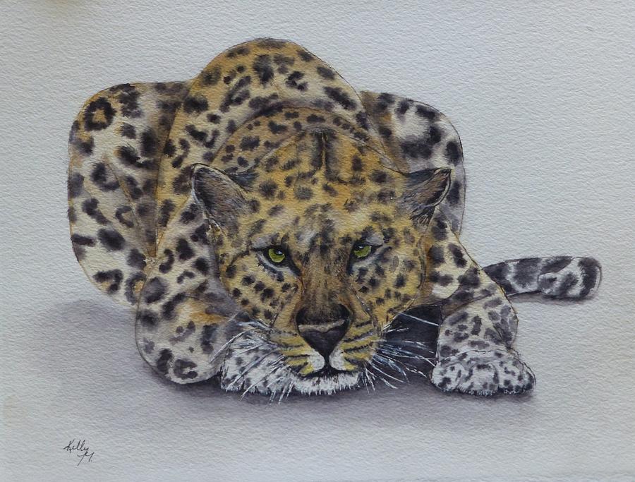 Prowling Leopard by Kelly Mills