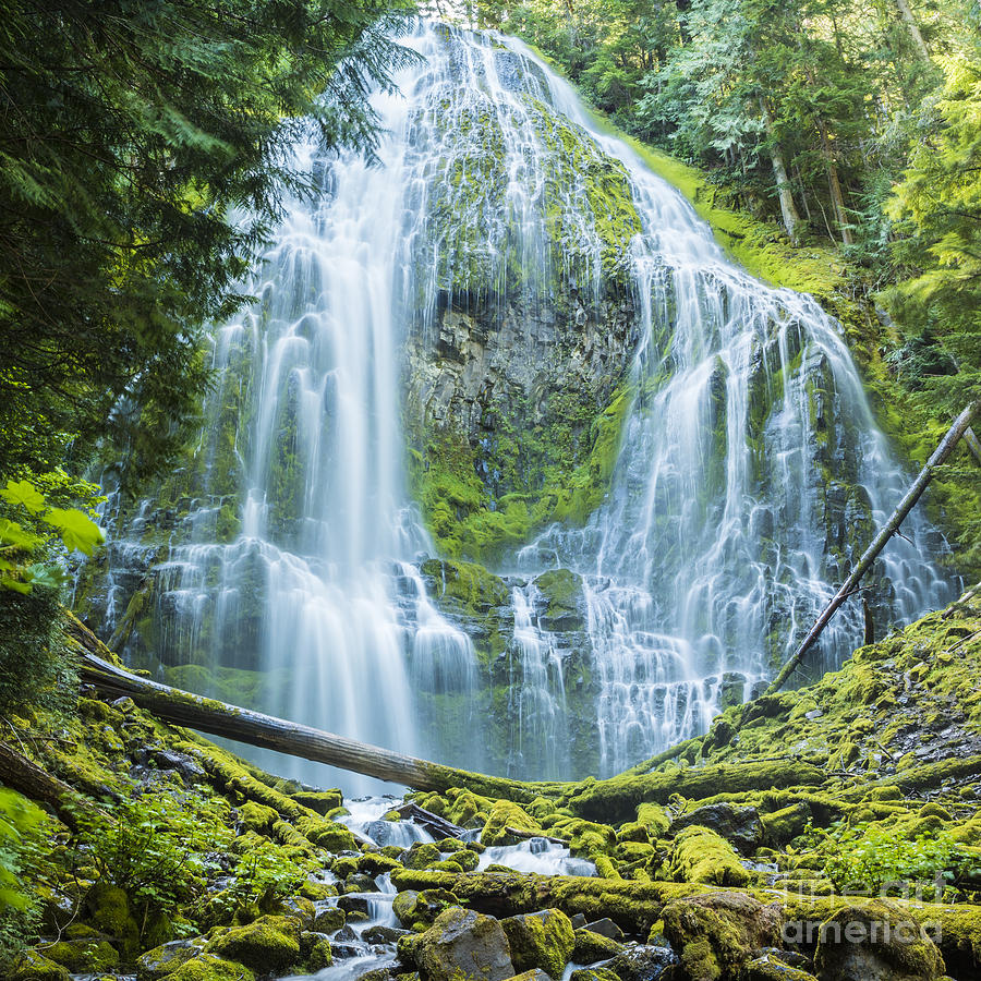Proxy Falls Central Oregon by Ken Brown