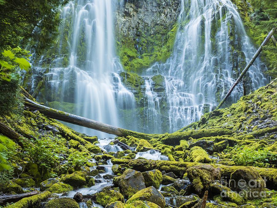 Proxy Falls Oregon by Ken Brown