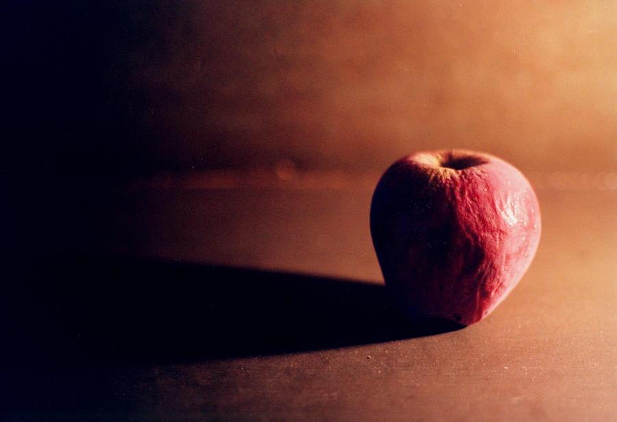 Apple Photograph - Pruned Apple Still Life by Michelle Calkins