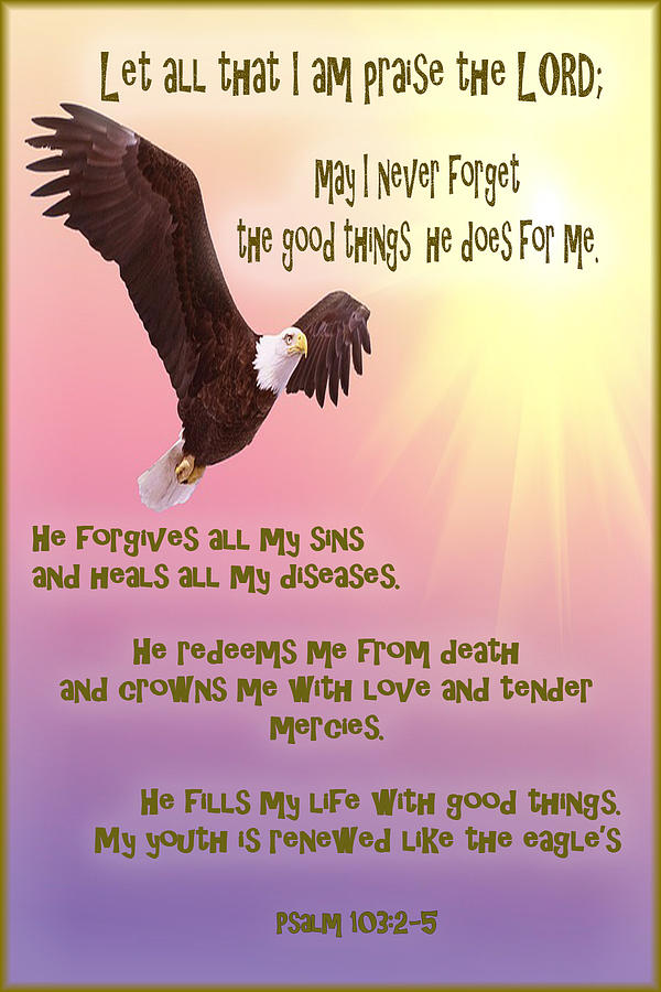 Eagle Photograph - Psalm 103 by SGLY Ministry