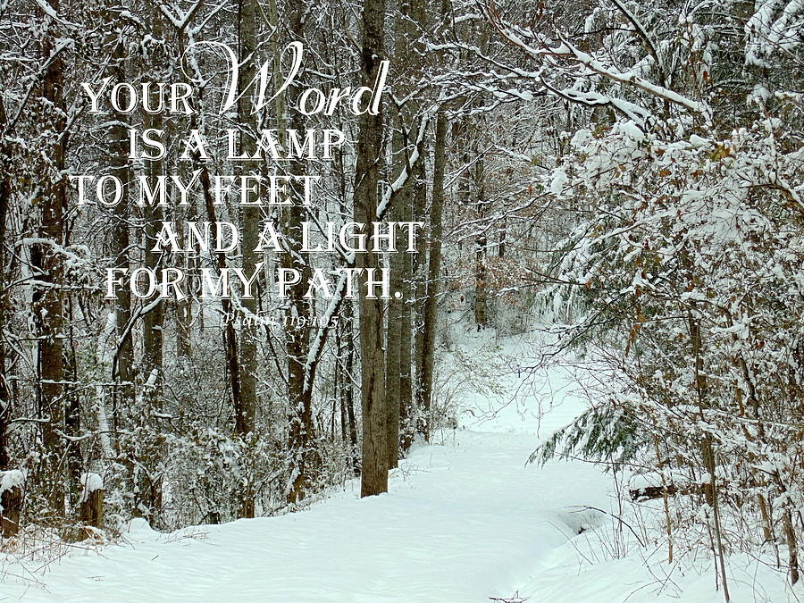 Psalm 119 105 Photograph