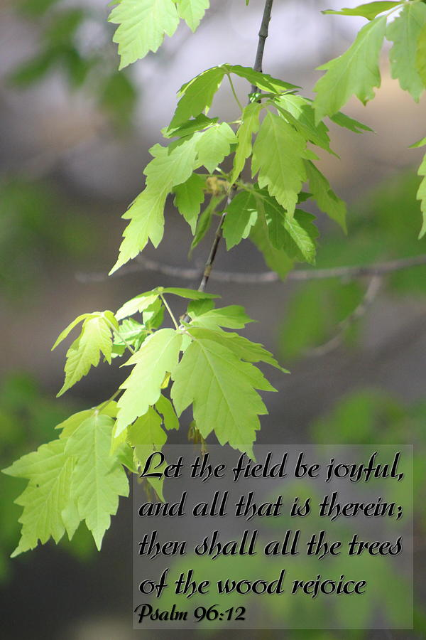 Psalm 96 Photograph - Psalm 96 12 Be Joyful by Colleen Cornelius