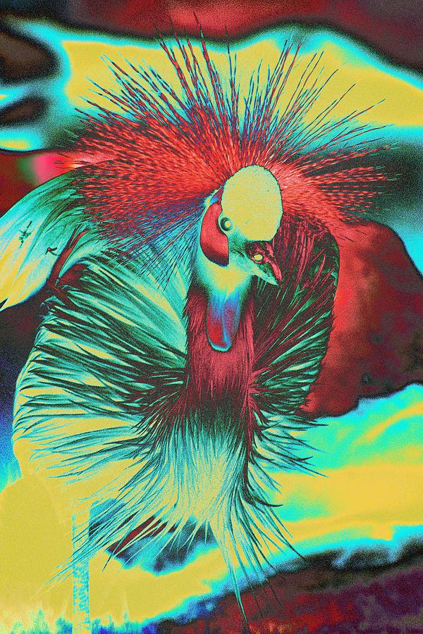 Bird Photograph - Psychedelic Crested Egret by Richard Henne