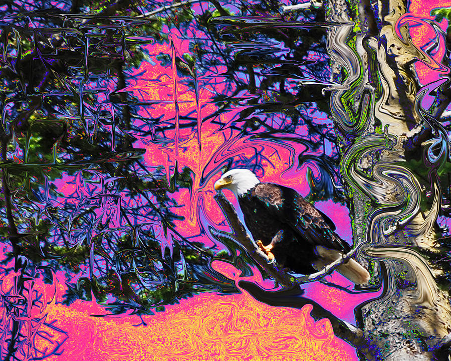 Psychedelic Eagle Photograph by Wilbur Young