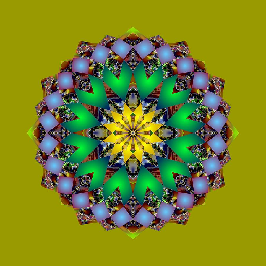 Psychedelic Mandala 003 A by Larry Capra
