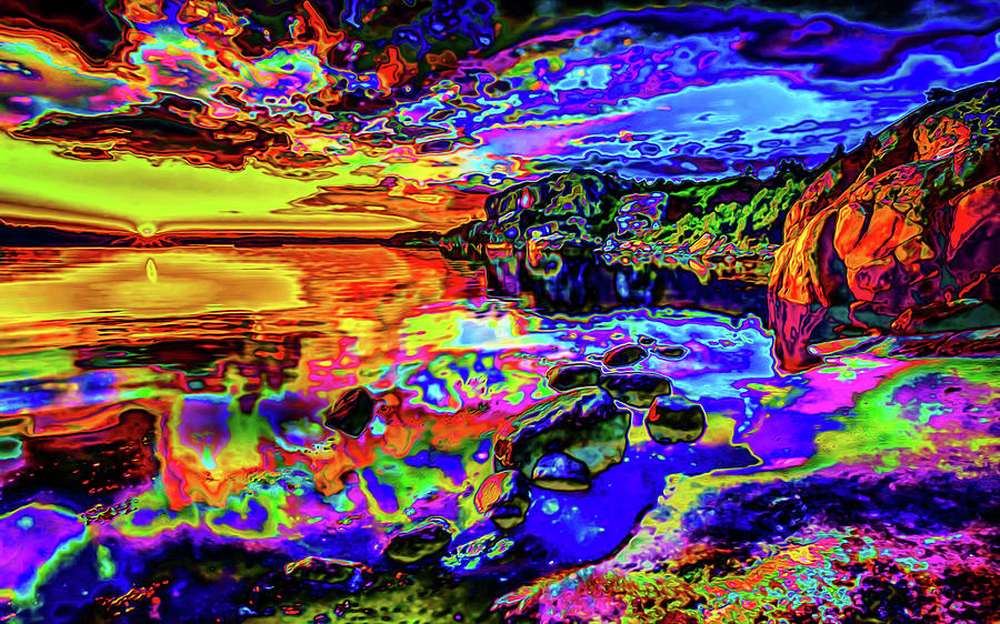 Psychedelic Sunset Landscape Digital Art by Ron Fleishman