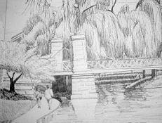 Boston Drawing - Public Gardens by Lisa Guarino
