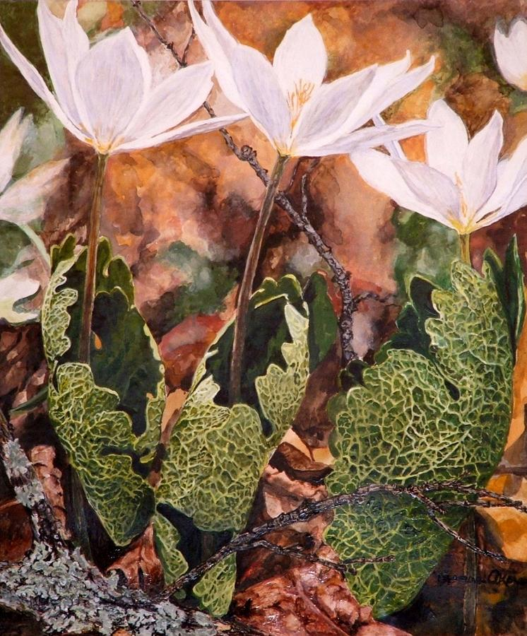Flowers Painting - Puccoon by Thomas Akers