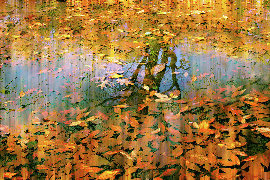 Autumn Photograph - Puddle Play by Jessica Jenney