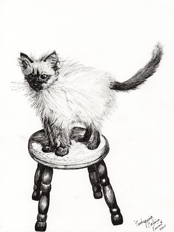 Stool Drawing - Pudsquiz Belina by Vincent Alexander Booth