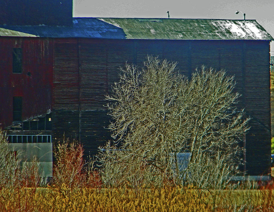 Abstract Photograph - Pueblo Downtown-sweeny Feed Mill 6 by Lenore Senior
