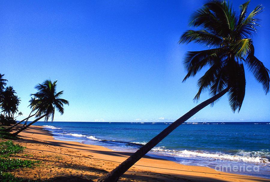 Puerto Rico Photograph - Puerto Rico Beach by Thomas R Fletcher