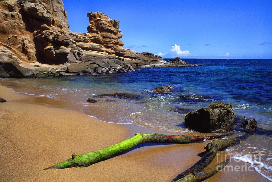 Caribbean Photograph - Puerto Rico Toro Point by Thomas R Fletcher