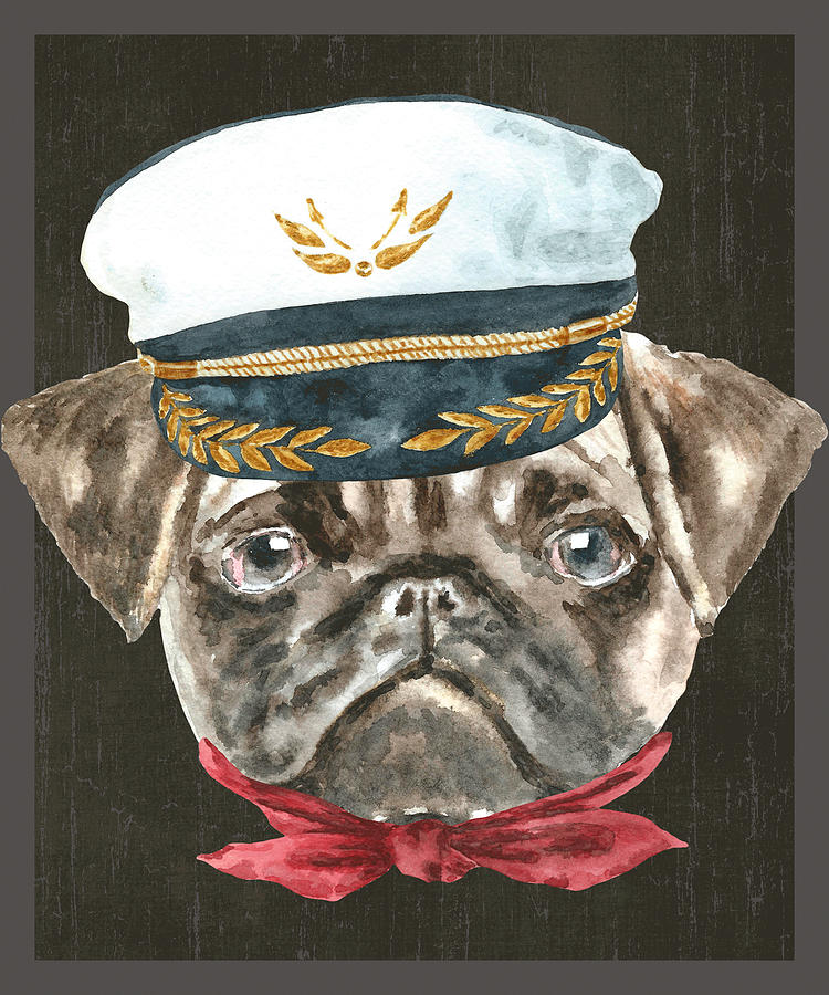 dc23c800f92 Dog Digital Art - Pug Captain Hat Red Scarf Dogs In Clothes by Trisha Vroom