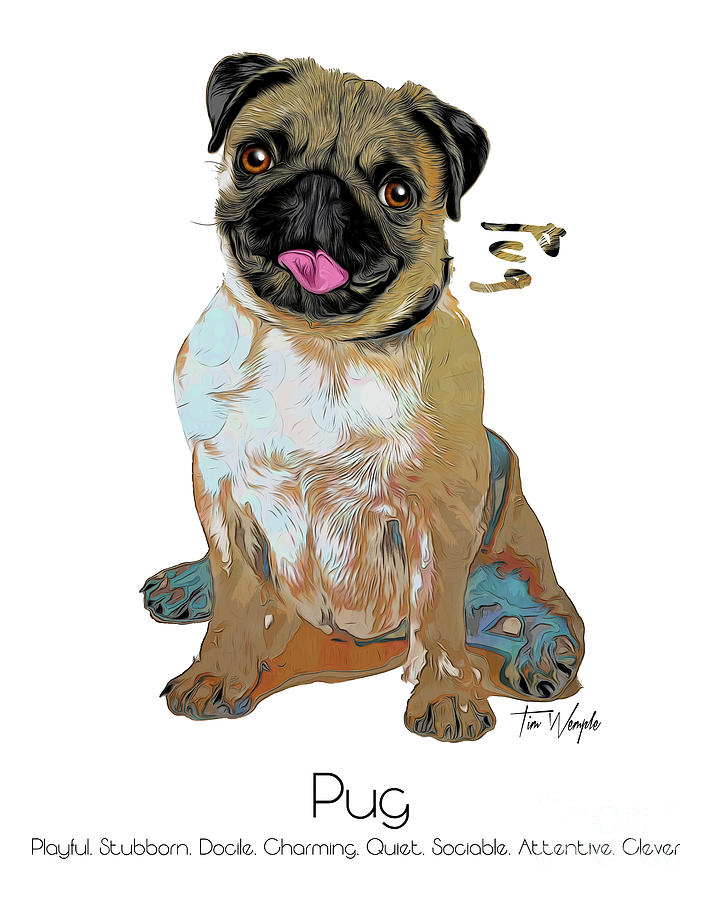 Pug Digital Art - Pug Pop Art by Tim Wemple