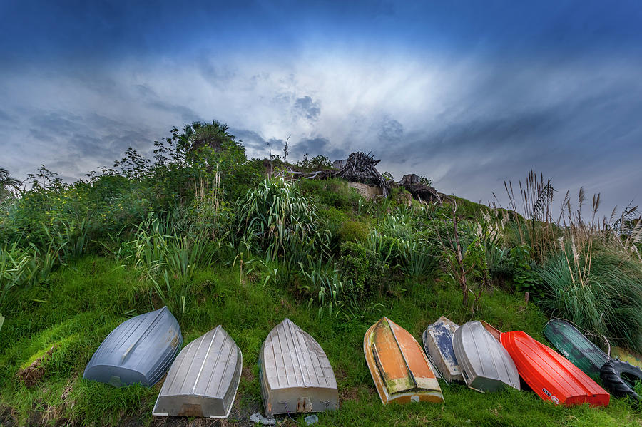 Pukenui - New Zealand by Michael Lees