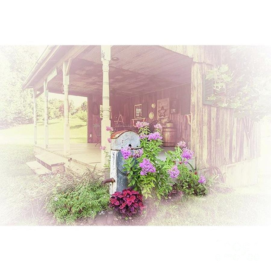 Vintage Photograph - Pump With Flowers Brazeau by Larry Braun