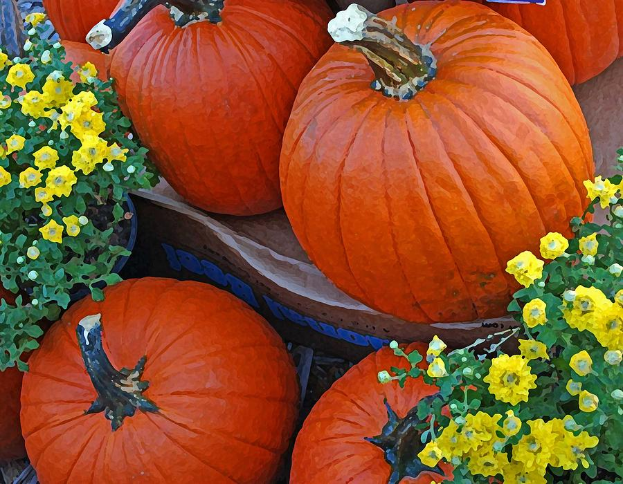 Flowers Photograph - Pumpkin And Flowers by Michael Thomas
