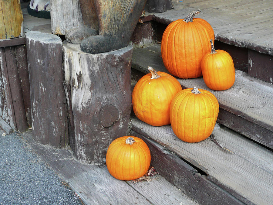Tranquility Photograph - Pumpkin Autumn In Adirondacks by Kate  Leikin