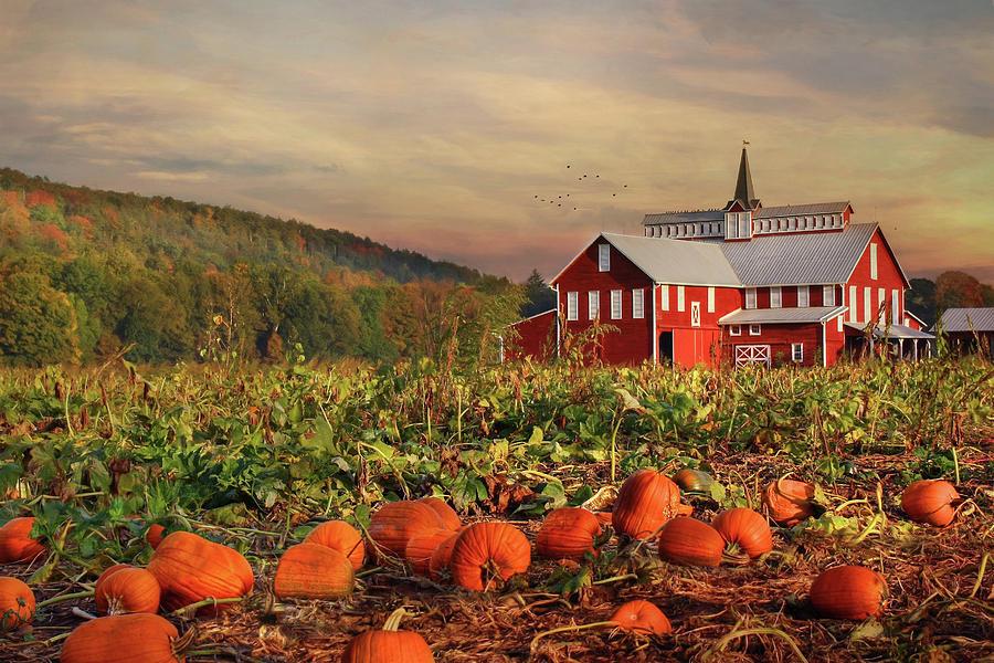 Barn Photograph - Pumpkin Farm by Lori Deiter