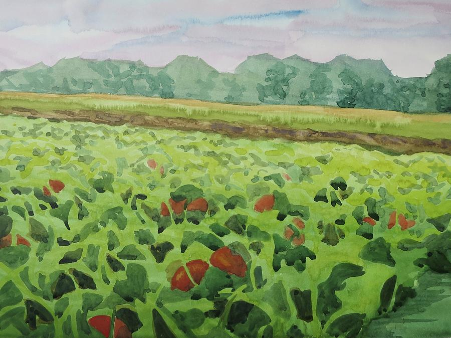 Plein Air Painting - Pumpkin Field by Bethany Lee