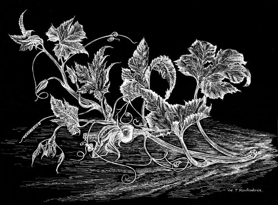 Graphic Painting - Pumpkin Flower by Tatiana Rodionova