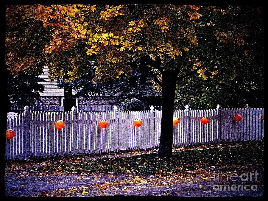 Pumpkins Photograph - Pumpkin Passage by Frank J Casella