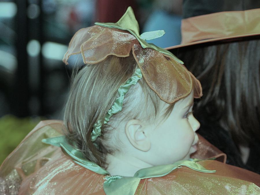 Portrait Photograph - Pumpkin Pie by Lisa Johnston