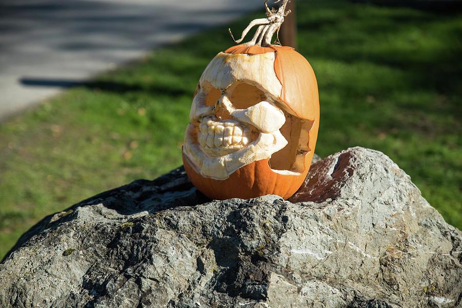 Pumpkin Photograph - Pumpkin Skull by Tom Cochran