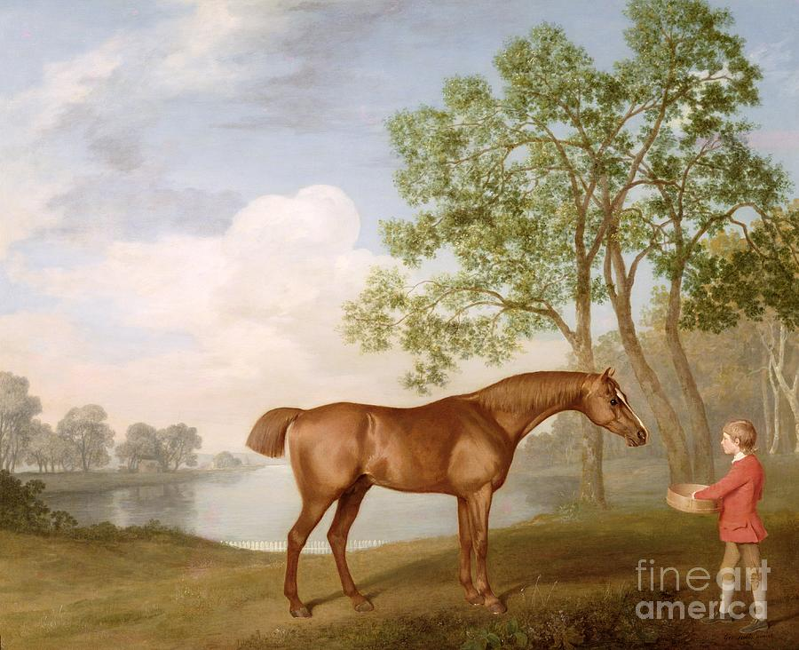 Pumpkin Painting - Pumpkin With A Stable-lad by George Stubbs