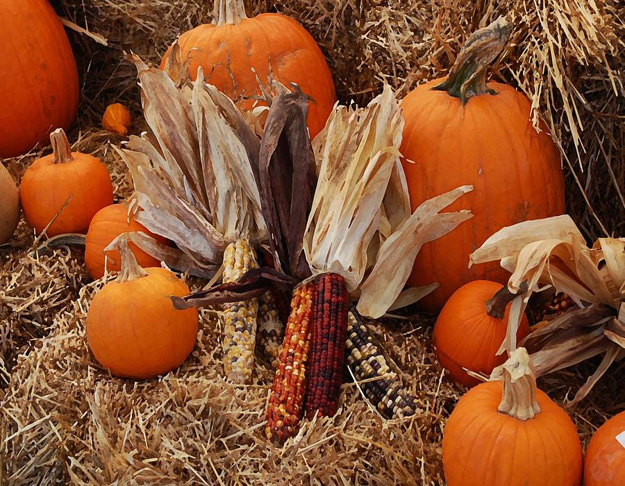 Flowers Photograph - Pumpkins And Corn by Michael Thomas