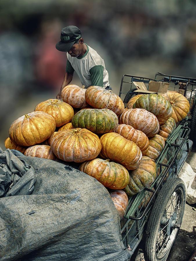 Pumpkins In The Cart Photograph
