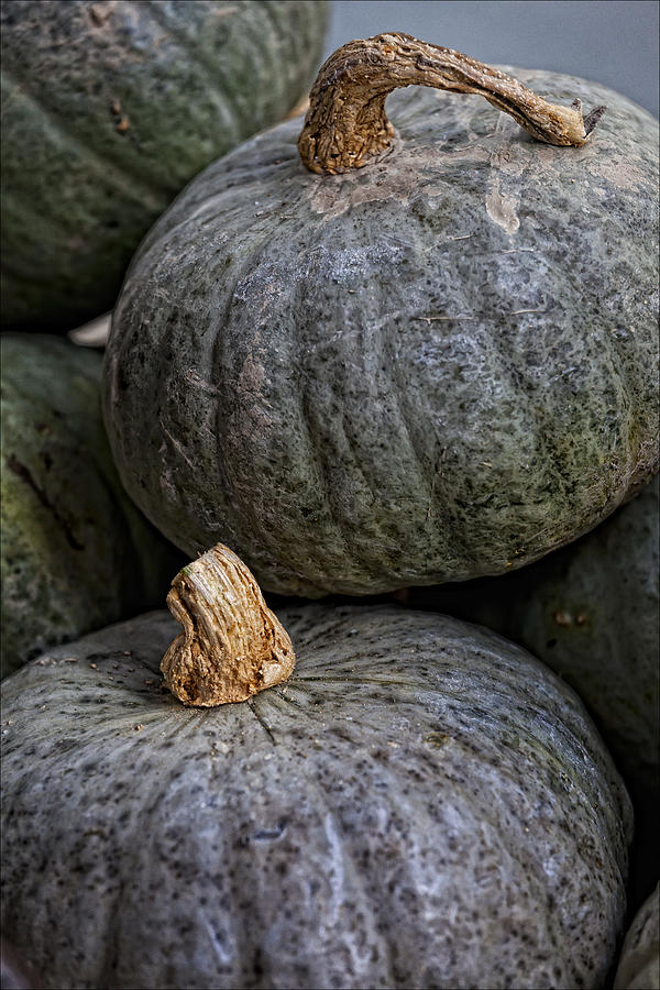 Food Photograph - Pumpkins Of Another Color by Robert Ullmann